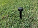 Smart Spider Antenna staked on grassy ground